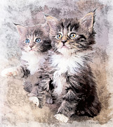 Kittens Digital Art - Two of a Kind by Tom Schmidt