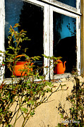 Broken Window Framed Prints - Two Orange Pots Framed Print by Robert Lacy