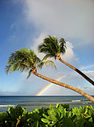 Tree Over Water Prints - Two Palm Trees On Beach And Rainbow Over Sea Print by Robert James DeCamp