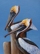 Sea Birds Paintings - Two Pelicans by Judy Arbuckle