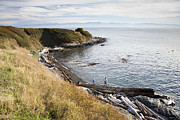 Strait Of Juan De Fuca Posters - Two People Play On A Driftwood Log Poster by Taylor S. Kennedy