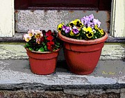 Dale   Ford - Two Pots of Pansies