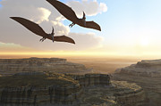 Animal Themes Digital Art Posters - Two Pterodactyl Flying Dinosaurs Soar Poster by Corey Ford