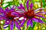 Donna Van Vlack Photos - Two Purple Daisys Fractal by Donna Van Vlack