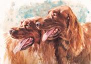 Irish Setter Posters - Two Redheads Poster by Debra Jones