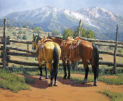 Corral Framed Prints - Two Saddle Horses Framed Print by Randy Follis