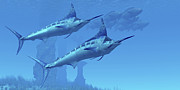 Isolated Digital Art - Two Sleek Blue Marlins Swim Close by Corey Ford