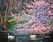 Swans... Paintings - Two Swans by Cynthia Sorensen