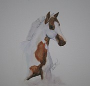 Pinto Paintings - Two Tone Foal by Susan Herber