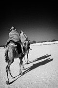 Camel Photo Prints - two tourists on camels return to base in the sahara desert at Douz Tunisia Print by Joe Fox