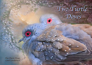 Card Of The Holiday Mixed Media Framed Prints - Two Turtle Doves Card Framed Print by Carol Cavalaris