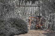 Bike Photos - Two Wheels by Scott Norris