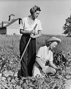 20-24 Years Framed Prints - Two Women Working On Field, (b&w) Framed Print by George Marks