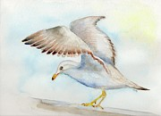 Doris Blessington - Tybee Seagull
