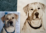 Pet Portraits Pyrography - Tyler by Adam Owen