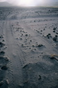 Dirt Road Posters - Tyre tracks and lava rocks on the vast ash plain near Mount Yasur Poster by Sami Sarkis