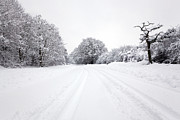 Snowy Road Posters - Tyre tracks in the snow Poster by Richard Thomas