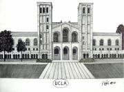 College Buildings Drawings Mixed Media Originals - U C L A by Frederic Kohli