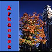 University Of Arkansas Posters - U of A Old Main Poster by Curtis Neeley