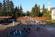 College Campuses Framed Prints - UC Berkeley . Sproul Hall . Sproul Plaza . Sather Gate and Sather Tower Campanile . 7D10003 Framed Print by Wingsdomain Art and Photography