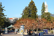 College Campuses Framed Prints - UC Berkeley . Sproul Plaza . Sather Gate and Campanile Tower . 7D9996 Framed Print by Wingsdomain Art and Photography