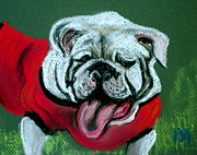 Pet Portraits Pastels - Uga by Pete Maier