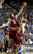 Razorbacks Photos - UK v Arkansas - 11 by Mark Boxley