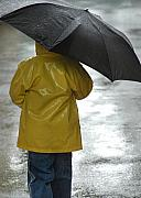 Editorial Metal Prints - Umbrella Boy Metal Print by Dan Holm