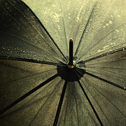 Drops Photos - Umbrella by Kristin Kreet