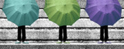 Selective Coloring Posters - Umbrella Trio Poster by Lisa Knechtel