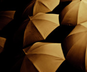 Umbrella Prints - Umbrellas I Print by Grebo Gray