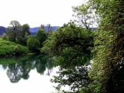 Umpqua River Prints - Umpqua River Print by Will Borden
