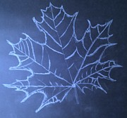 Mathematics Drawings Prints - Uncertaintys Leaf Print by Jason Padgett