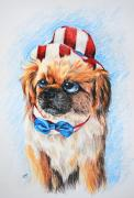 Pekingese Framed Prints - Uncle Sam Framed Print by Jai Johnson