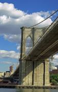 Sharla Gentile - Under Brooklyn Bridge