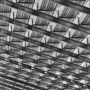 Crowds  Prints - Under the Bleachers Print by Brian Mollenkopf