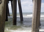 Pensacola Fishing Pier Framed Prints - Under The Boardwalk Framed Print by Karen Devonne Douglas