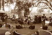 Music Photo Originals - Under the Oaks by Dennis Jones