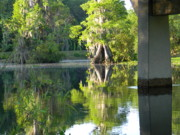 Florida Bridge Photo Originals - Under the Withlacoochee Bridge by Warren Thompson