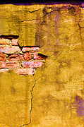 Yellow Ochre Prints - Underneath It All Print by Jan Amiss Photography