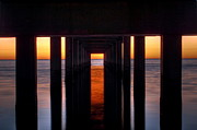 Pixel Perfect By Michael Moore Prints - Underside of the Pier Print by Pixel Perfect by Michael Moore