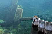 Scott Hovind - Underwater Fence