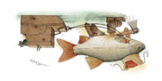 Fish Drawings - Underwater by Kestutis Kasparavicius