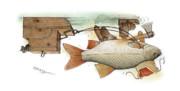Kestutis Kasparavicius - Underwater