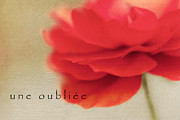 Une Oubliee Print by Reflective Moments  Photography and Digital Art Images