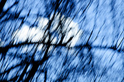 Ink Drawing Photo Prints - Unexpected An Abstract Sky Print by Andee Photography