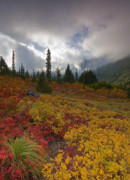 Fall Photos - Unicorn PEak by Mike  Dawson