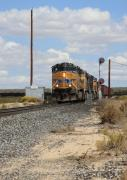 Telephone Pole Prints - Union Pacific 7184 in Chase CA Print by Troy Montemayor