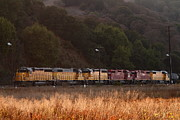 Railroads Photo Metal Prints - Union Pacific Locomotive Trains . 7D10551 Metal Print by Wingsdomain Art and Photography