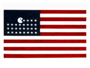Stars And Stripes Prints - United State of the Man Print by Keith QbNyc